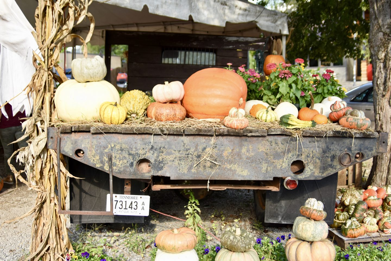 Nashville Blogger Meet Up, Pumpkin Patch
